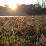 An Autumnal Odyssey – Sun and Frost on October 26