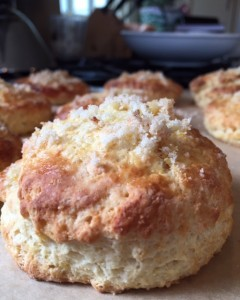 Mystical-Magical, Tingles-on-Your-Tongue Honey; Lemon-Corn Scones with Chestnut Honey