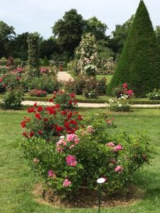 The Paris Genome and Geome – Of Garden and Procuring Habit