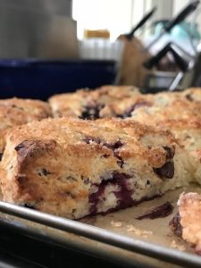 In Tundra Time, Highlighting A Virtue of Frozen Fruit – Dark Cherry and Chocolate Chunk Scones